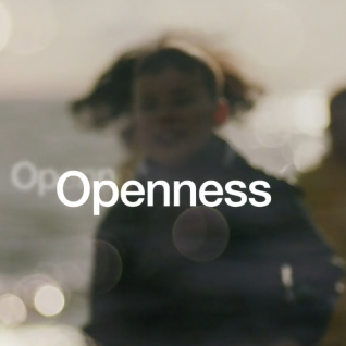 What is openness? The Nordics